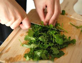 cortando-cilantro