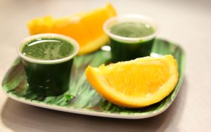wheatgrass-shot1