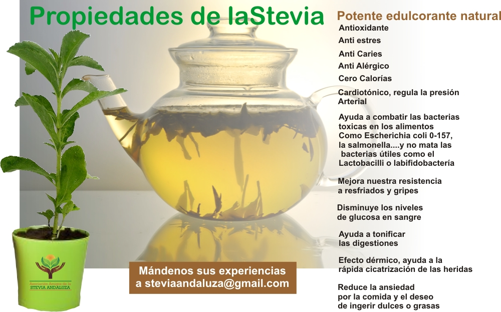 USO DE LÍQUIDO DE STEVIA EN LUGAR DE AZÚCAR | Aromaterapia