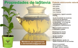 infusionstevia