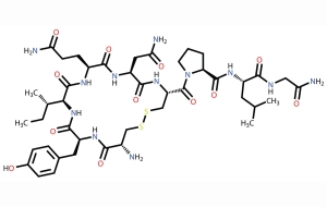 Los secretos de la oxitocina