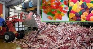 gelatina-deshechos-animales