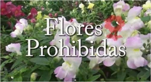 Flores Prohibidas