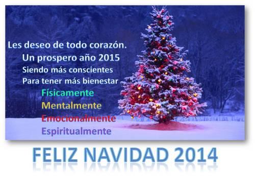 NAVIDAD 2014 -2