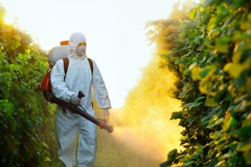 fruit-pesticide-spray