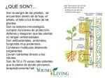 young-living-frecuencias-nixon-2-638