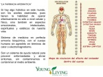 young-living-frecuencias-nixon-6-638
